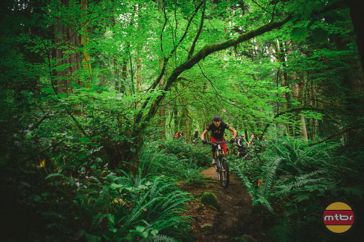 Ruben Salzgeber In Forest