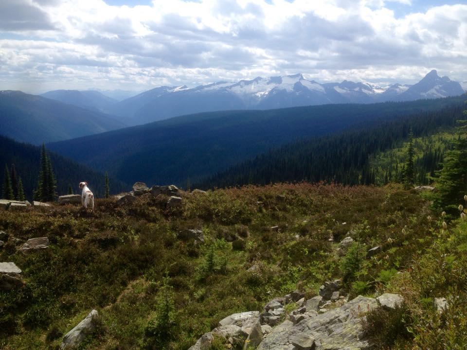 3 Month BC Trip-rudy-alpine.jpg