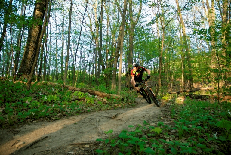 Wisconsin Trail Photos-rwgbsun_resize.jpg