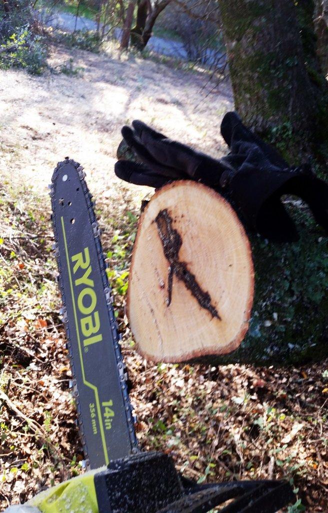 Cordless chain saw....?-ryobi-battery-chainsaw.jpg