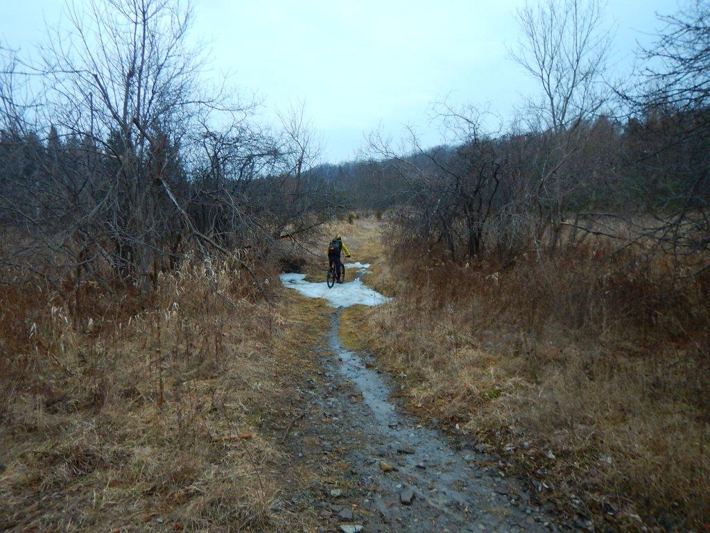 Local Trail Rides-rzvbtzj.jpg
