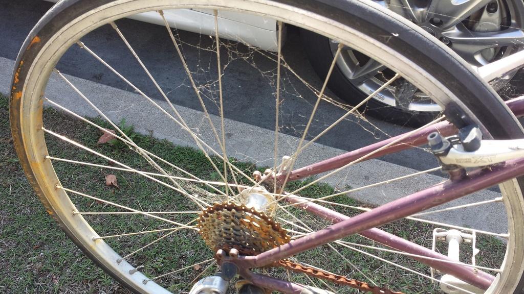 Sad Bikes-sad-bike.jpg