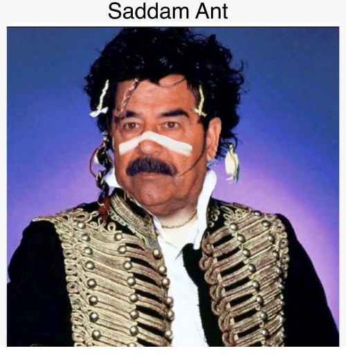 Funny picture or meme thread-saddam-ant-36461564.png