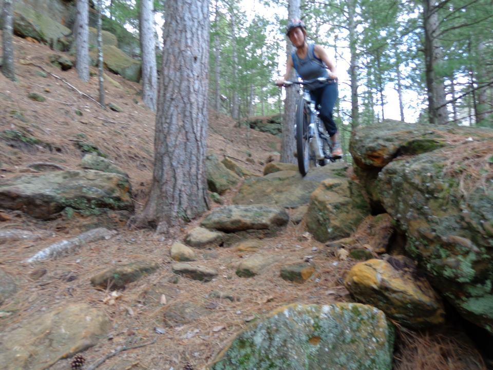 What did You do today on your mountain bike?-sallyatlevis.jpg