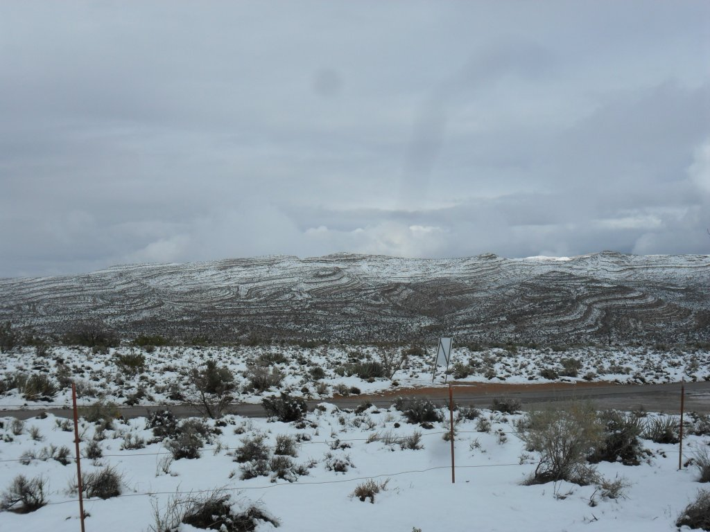 It was beautiful here today. We got a nice snow storm in the early morning hours.-sam_0047.jpg