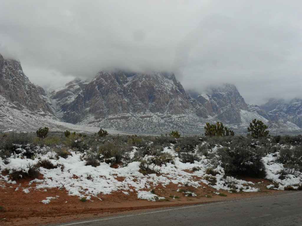 It was beautiful here today. We got a nice snow storm in the early morning hours.-sam_0057.jpg