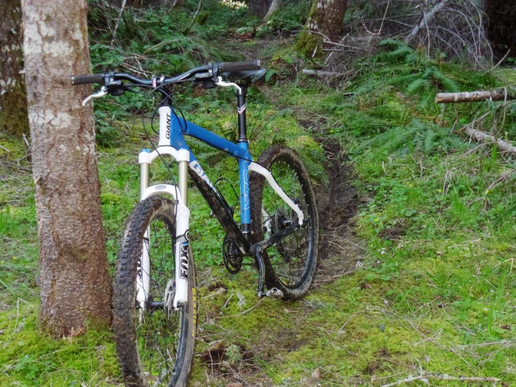 Post your hardtail Giants-sam_0207.jpg