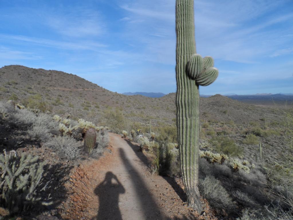 Sonoran Trails-sam_1910.jpg