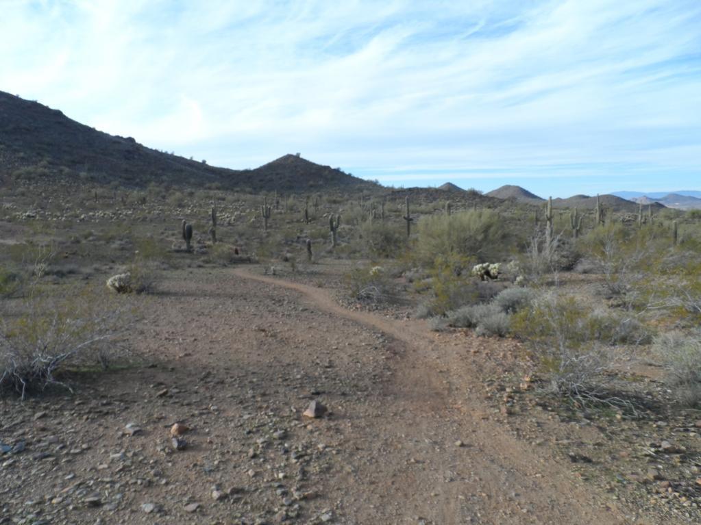 Sonoran Trails-sam_1913.jpg