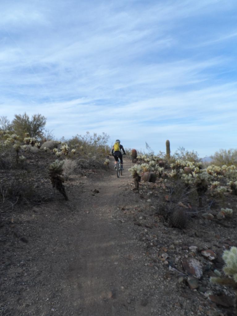 Sonoran Trails-sam_1915.jpg