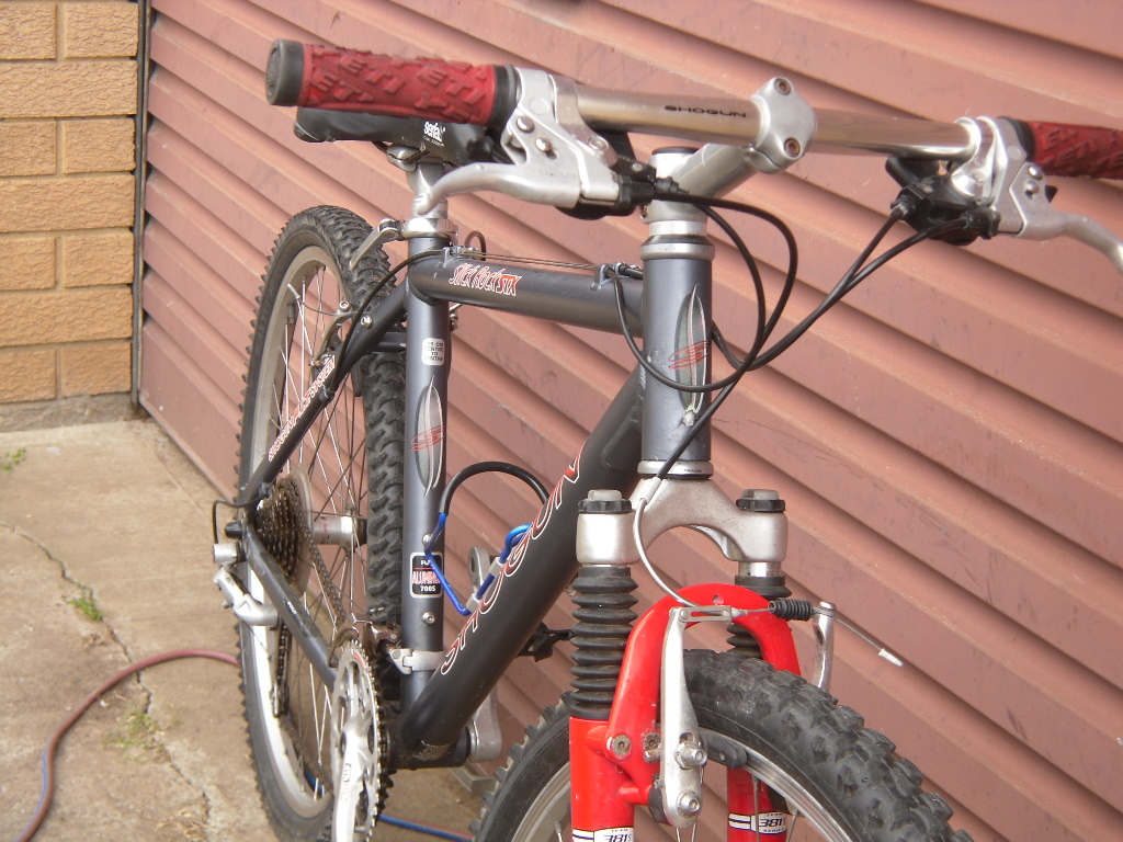 my shogun slick rock stx bike-sam_2550.jpg