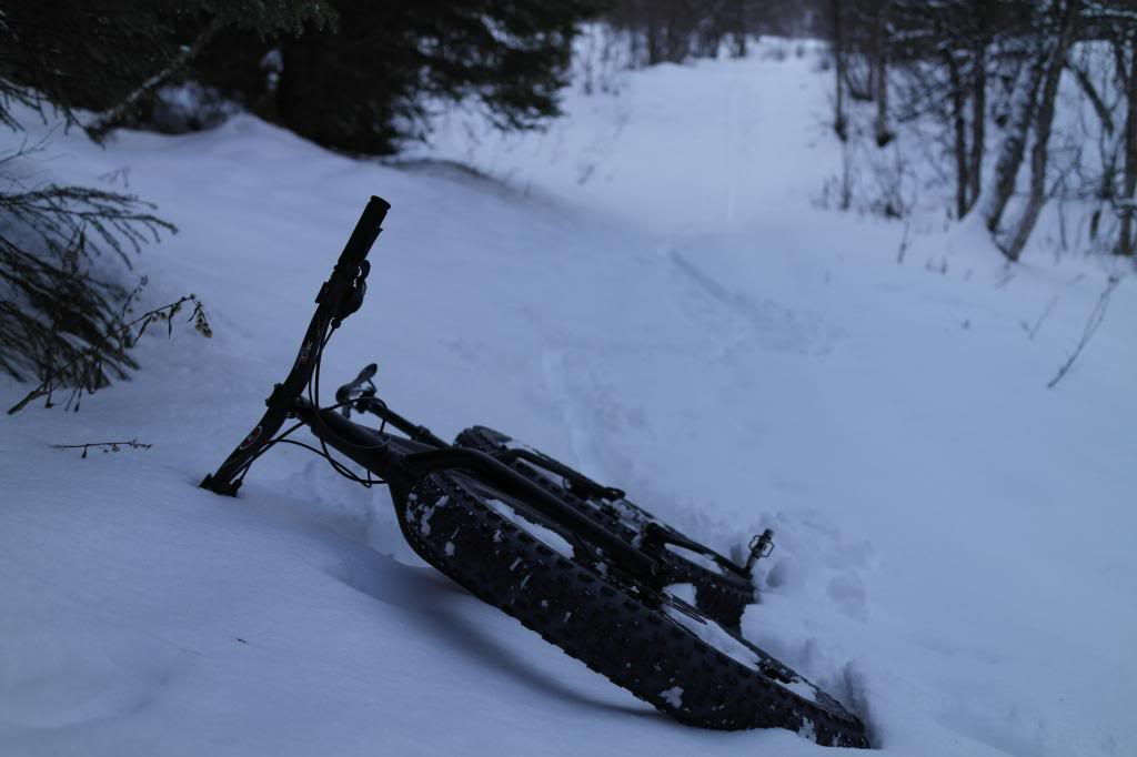 First Fat Bike -- recommendations?-sam_4745_zpsba92b734.jpg