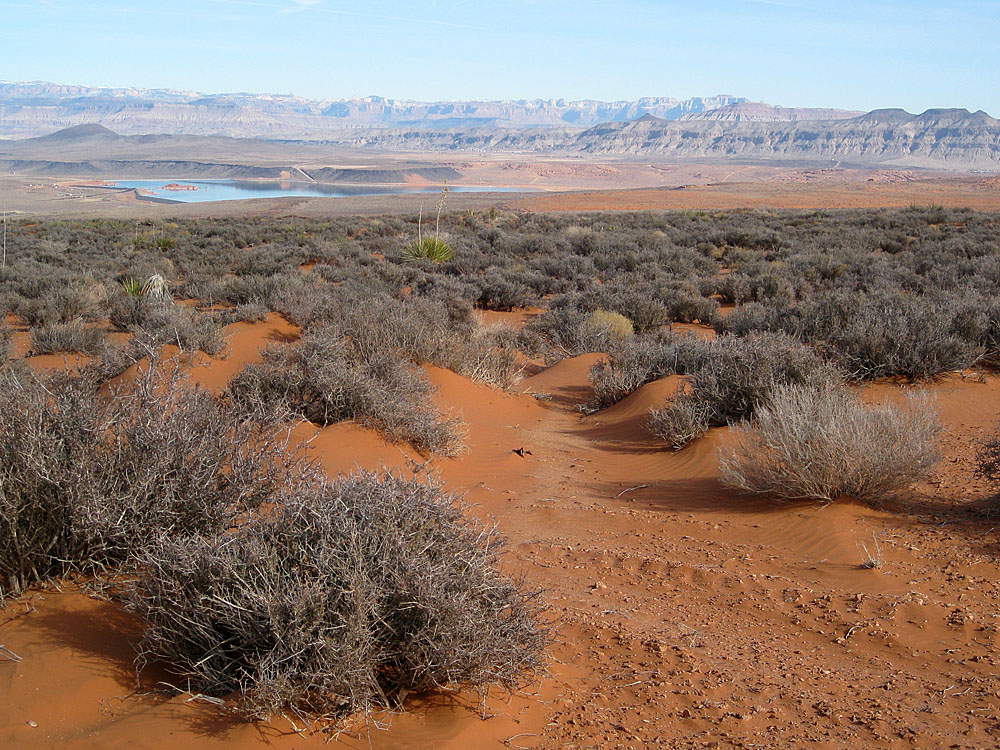Return to Sand Mountain.-sand-hollow.jpg