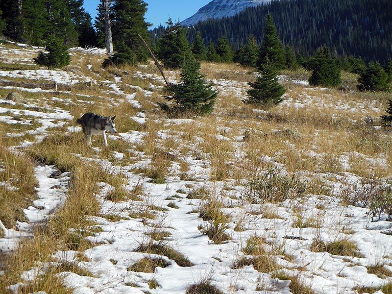 Trail Pics-sandcreektrail-3.jpg
