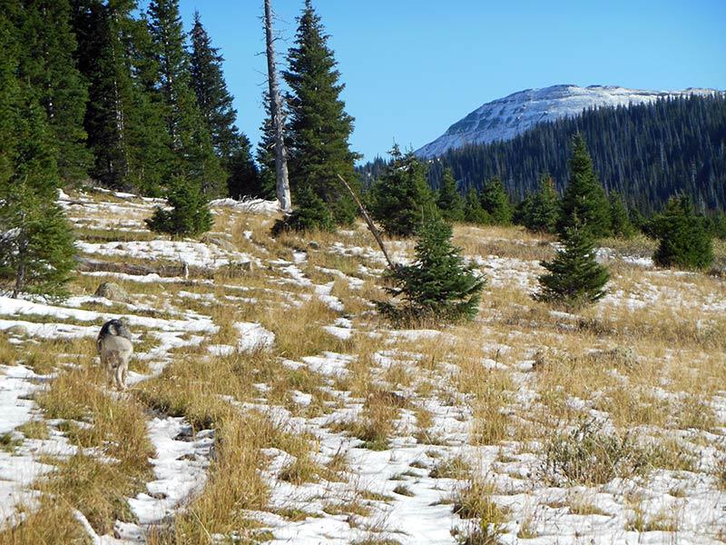Trail Pics-sandcreektrail-4.jpg