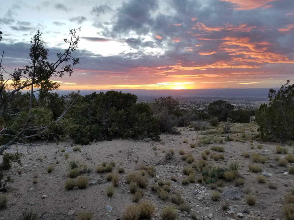 The NM Trail Pix Thread-sandia-foothills.jpg