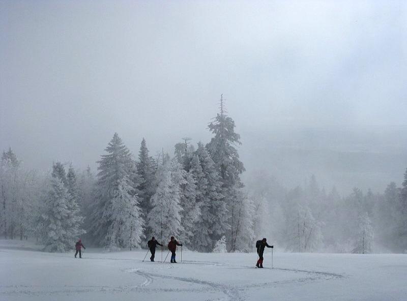 Ski or MTB?!?!  Tough Choices-sandia-mt-xc-ski.jpg