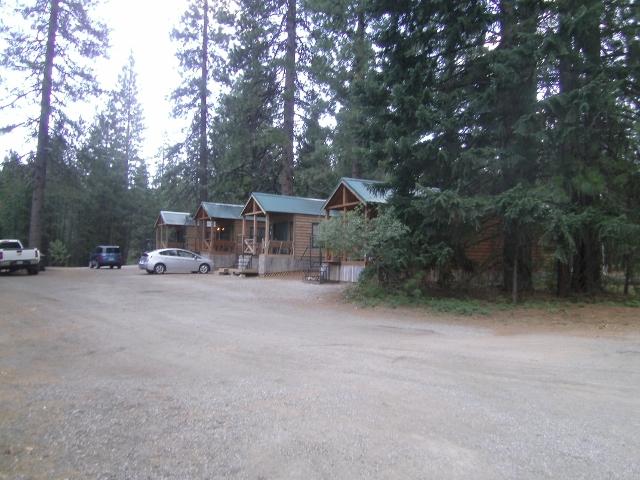 Mountain Biking Mt. Shasta Area?-sany0036-640x480-.jpg