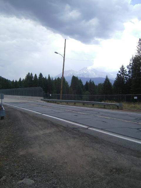Mountain Biking Mt. Shasta Area?-sany0044-640x480-.jpg