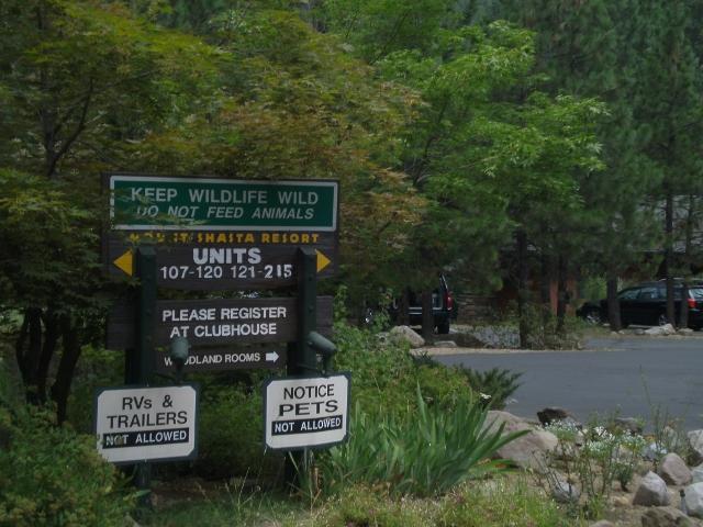 Mountain Biking Mt. Shasta Area?-sany0046-640x480-.jpg