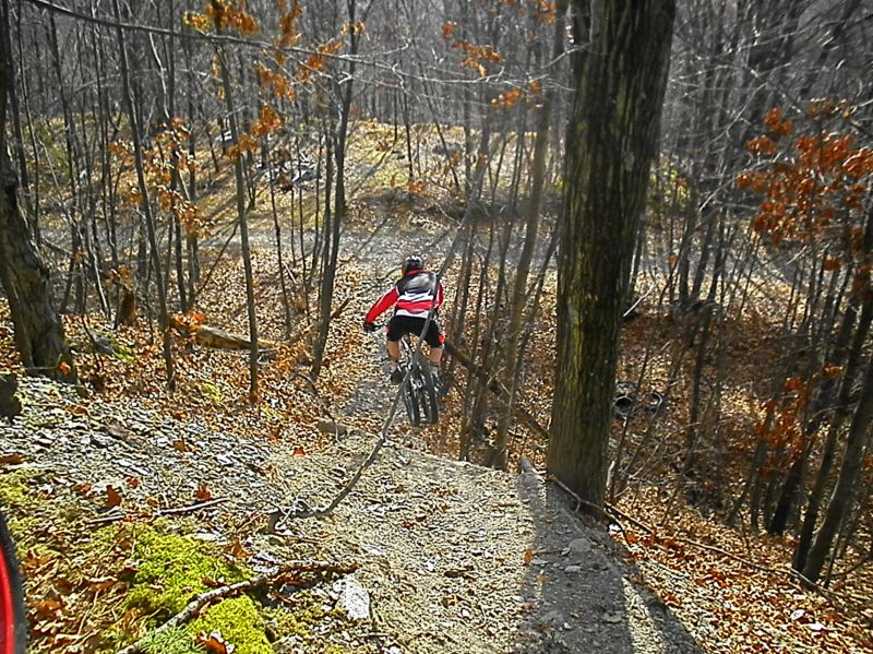 Roaring Creek Freeride-sany2060.jpg