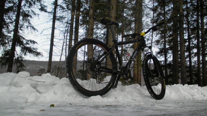 Any Trails Rideable-sany2849.jpg