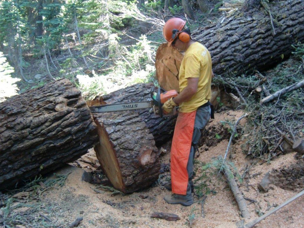 Mills Peak Trail Expansion Plans-saw.jpg