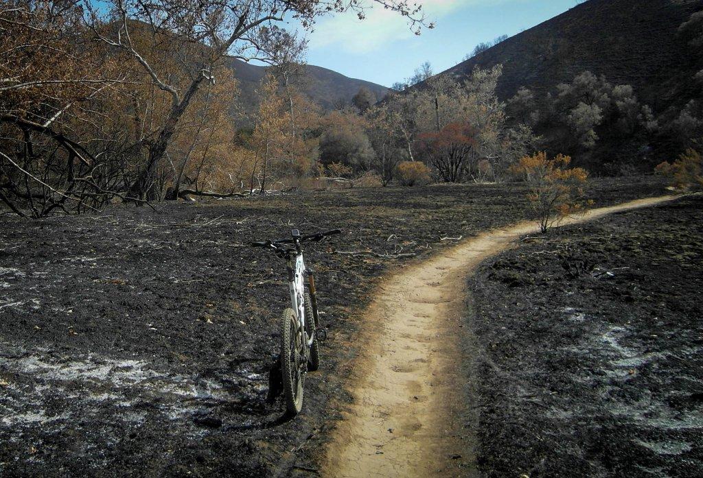 Western SM Mtns on Fire-sc2.jpg