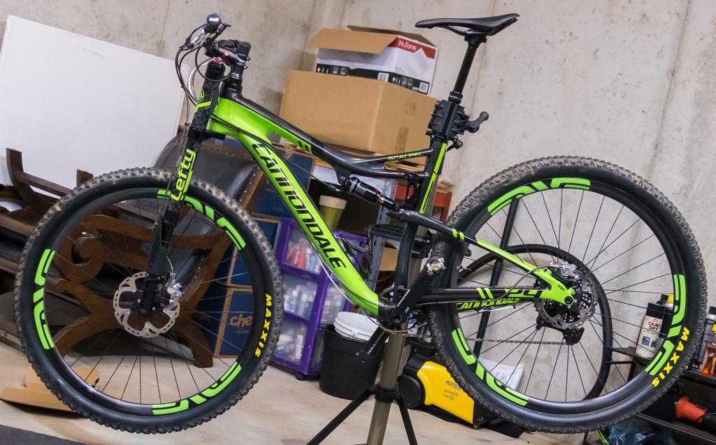 Best Bikes for Tall Guys-scalpel_new.jpg
