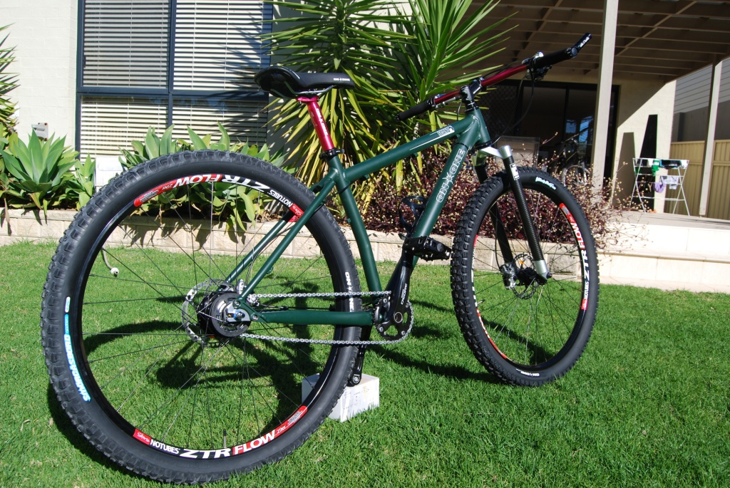 Scandal 29er build with Alfine 8-scandal-2c.jpg