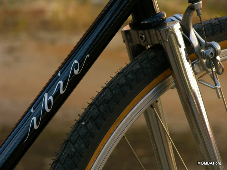 My tribute-bike to the Ibis Scorcher..-scorcherfork.jpg