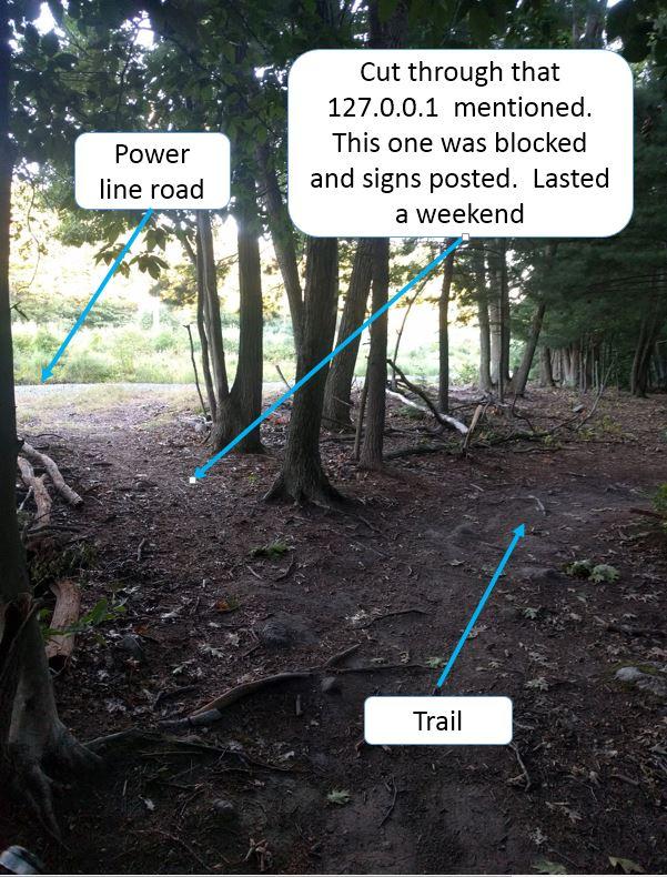 Who the Freak is homogenizing the LandLocked for craps sake-scout-power-lines.jpg