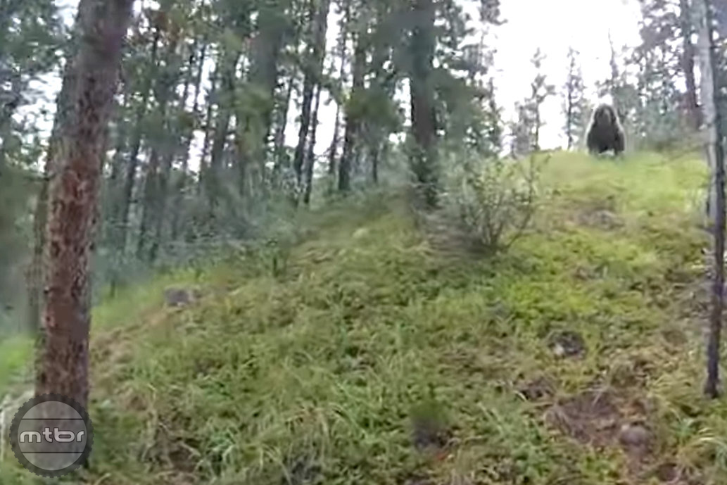 Screen capture of two mountain bikers charged by a bear in Jasper, CA