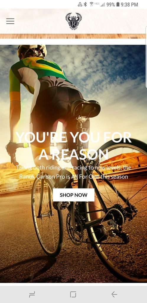 Ross - new bike brand?-screenshot_20181220-213845_chrome.jpg