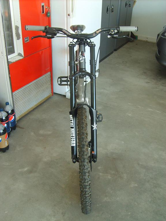 post your mongoose-sd532069.jpg