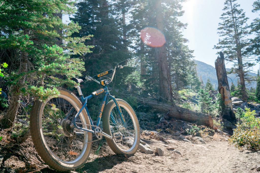 SE Bikes OM DURO-se-bikes_om-duro_27-5_steel-enduro-hardtail-bmx-cruiser-mountain-bike_trailside.jpg