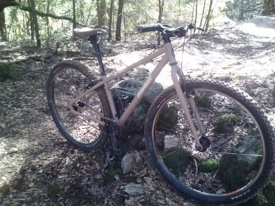 Lets see some steel 29ers!-se-stout.jpg