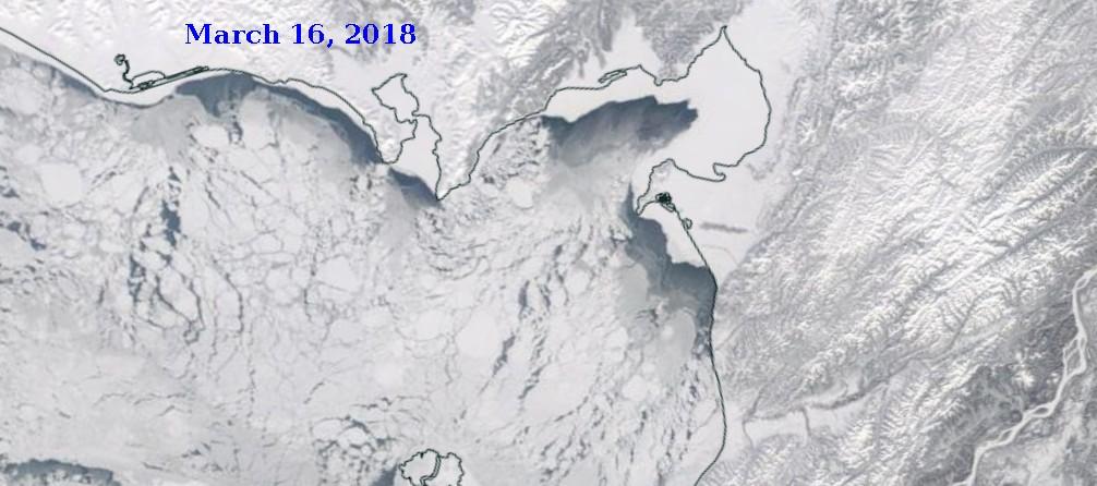 Iditarod Trail Invitational 2018-sea-ice-march-16-2018.jpg
