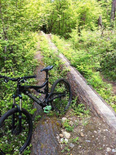 San Antonio Rider On Northwest Trails-seatle_2.jpg