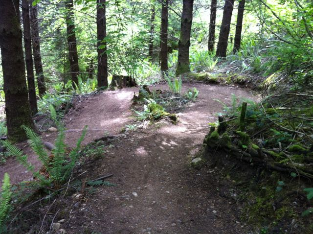 San Antonio Rider On Northwest Trails-seatle_6.jpg