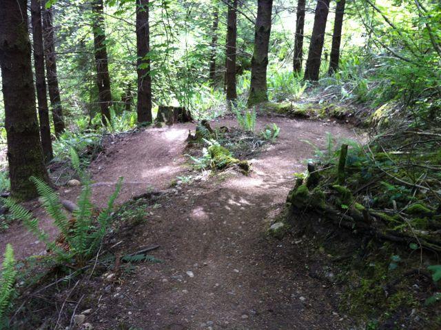 San Antonio Rider On Northwest Trails-seatle_6.jpg