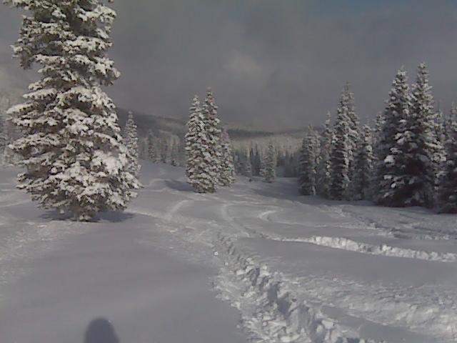 Ski or MTB?!?!  Tough Choices-securedownload%5B1%5D.jpg