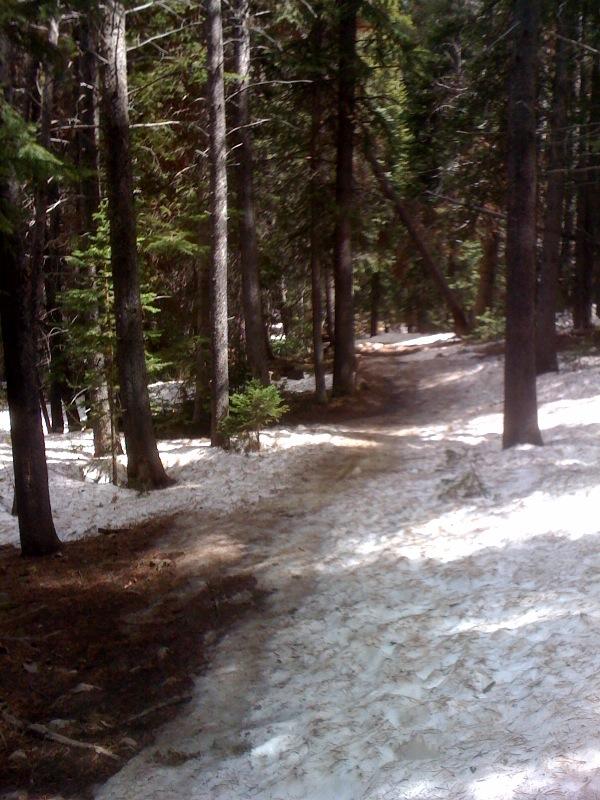 Damn Colorado Weather-securedownload-3.jpeg