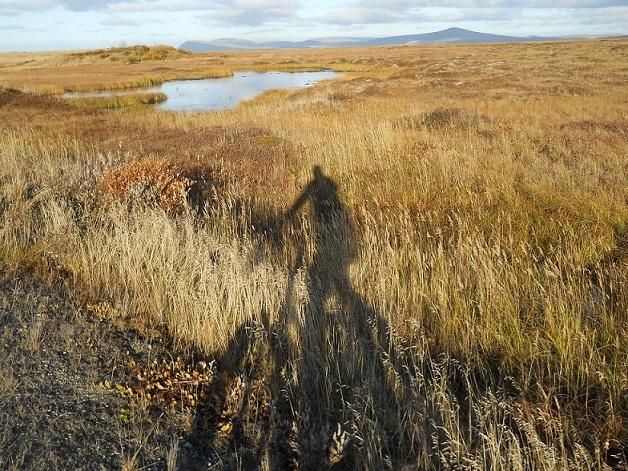 Daily fatbike pic thread-shadow.jpg