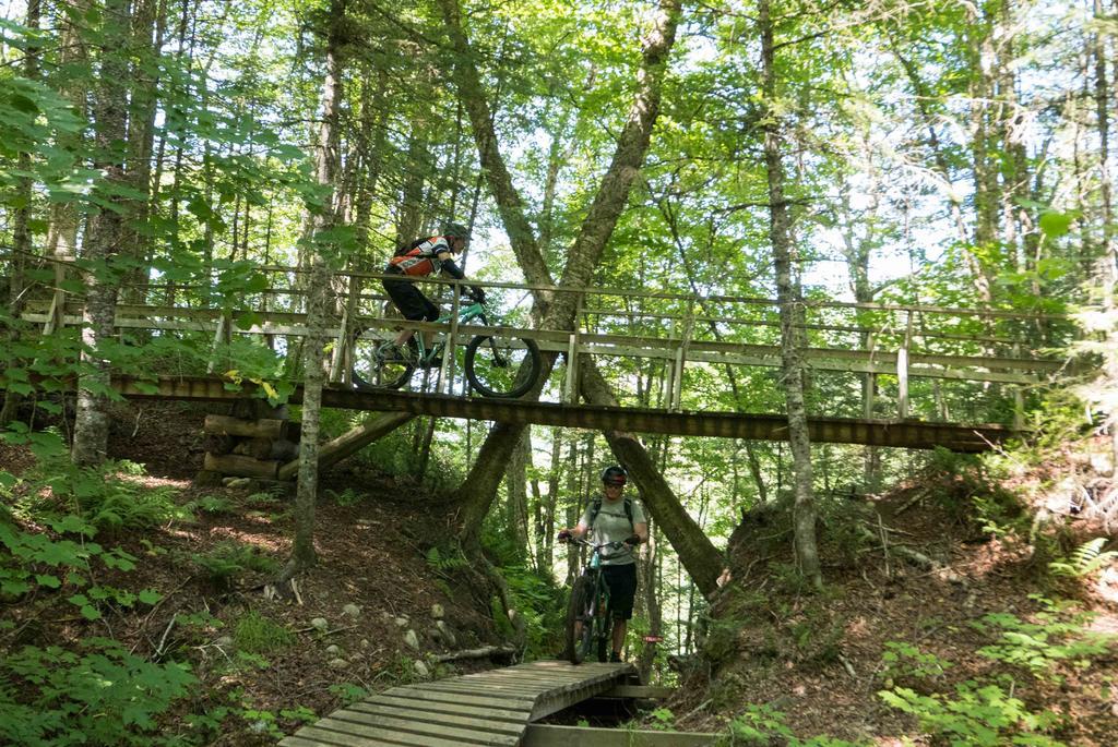 Bridges of Eastern Canada-shannahan-1-1-5.jpg