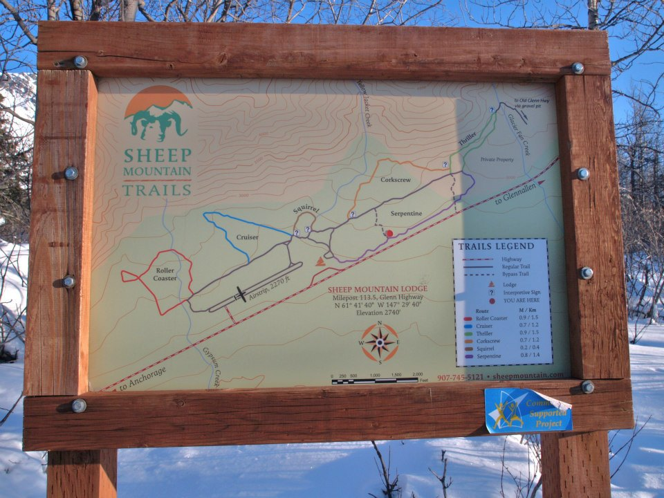 Sheep Mountain Challenge-sheep-m.jpg