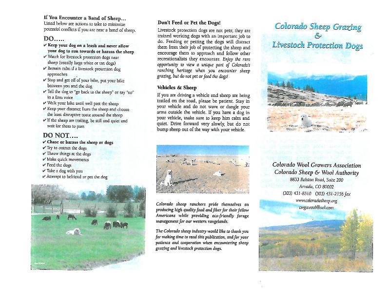 Sheep Guard Dogs and Mountain Bikers-sheepdogs1.jpg