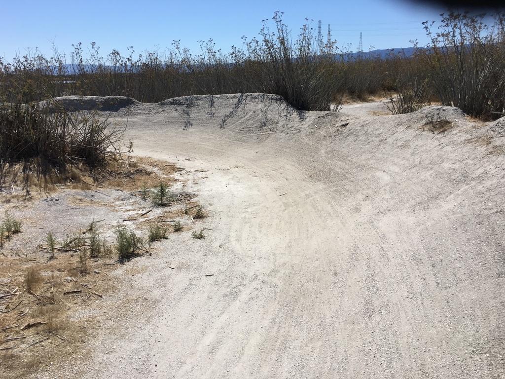 The Shells (Redwood/Foster City) for Lunch Ride?-shells-berm.jpg
