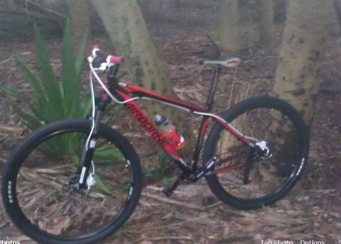 Post Your Modified Airborne Bikes-shore-trail-bike.jpg