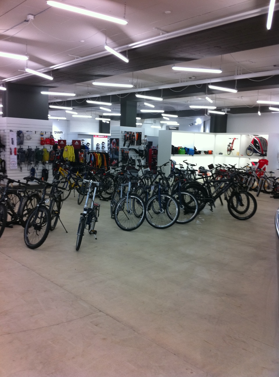 A visit to Eighty-Aid in Switzerland-showroom.jpg
